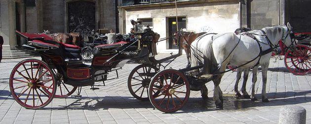 Carroagem produzida na cidade alemã Landau